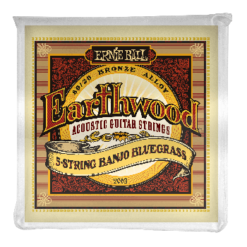 Ernie Ball Earthwood 80/20 Bronze 2063